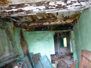 Seikkailumieltä tarvittiin, kun tästä aloitettiin unelmien talon raivaus.